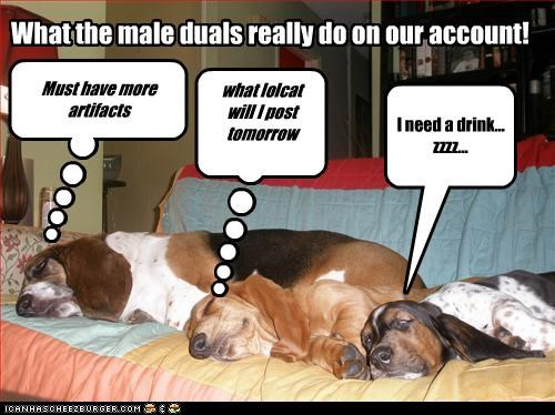 What the male duals really do on our account! what lolcat will I post tomorrow I need a drink... zzzz... Must have more artifacts