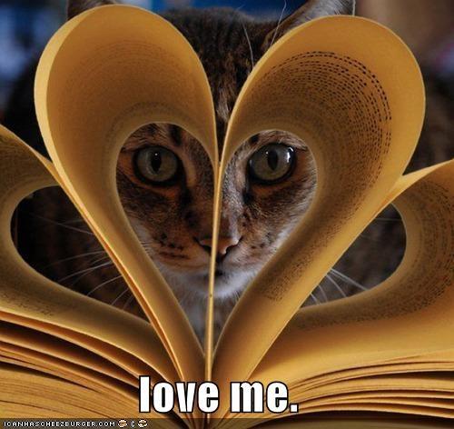 book caption captioned cat Command cute love me peeking - 4051954688