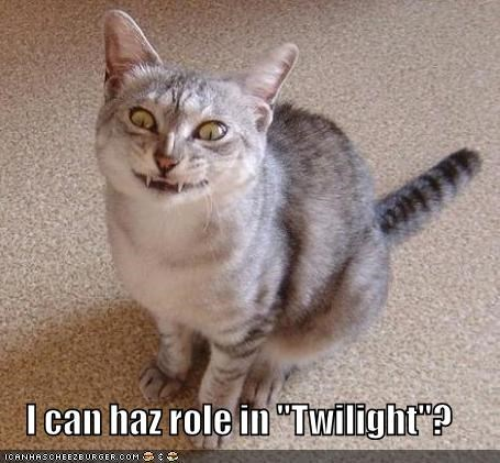 auditions,caption,captioned,cat,fangs,i can haz,question,vampire