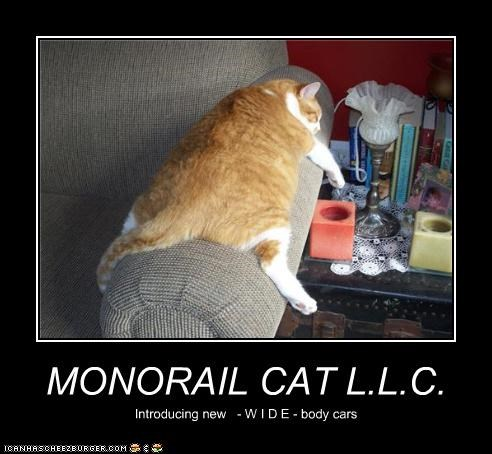 MONORAIL CAT L.L.C. Introducing new - W I D E - body cars