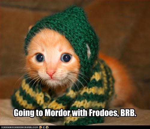 adorable,brb,caption,captioned,cat,frodo,Hall of Fame,kitten,Lord of the Rings,mordor,sweater