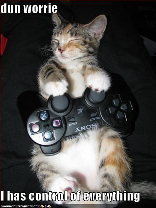 caption captioned cat control controller cute dont worry everything kitten playstation sleeping - 4055340544