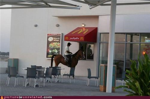 animals,drive through,horse,the middle east,wtf