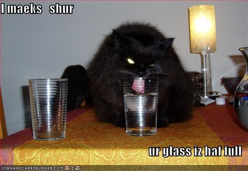 black caption captioned cat drinking evil eyes glass glass half full making sure tongue