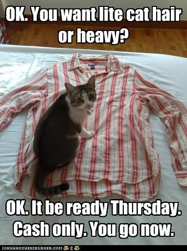 caption captioned cash only cat Command decision heavy leave lite now options ready shirt Thursday - 4057073152