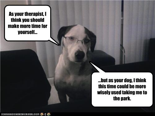 advice glasses great dane Hall of Fame human mixed breed opinion ownership park professional therapist time to oneself walk - 4057442048