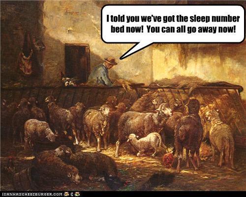 animals art funny painting sheep - 4058092800