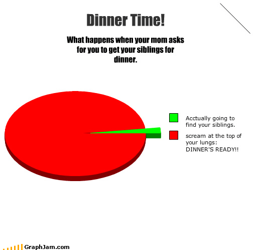 dinner time,food,mom,Pie Chart,siblings,yelling
