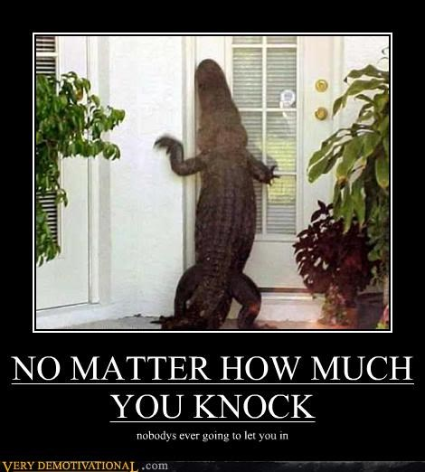 alligator,animals,crocodile,doors,knocking,Mean People,Sad,wtf