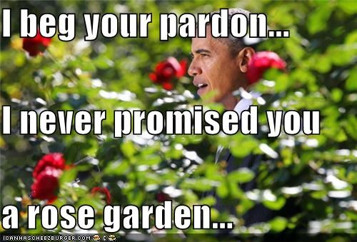 I beg your pardon... I never promised you a rose garden ...