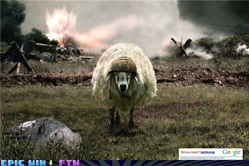 One Dangerous Battlesheep