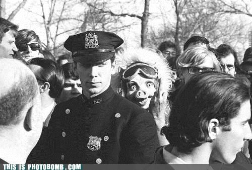 Animal Bomb cops creepy jk photobomb pig mask vintage weird