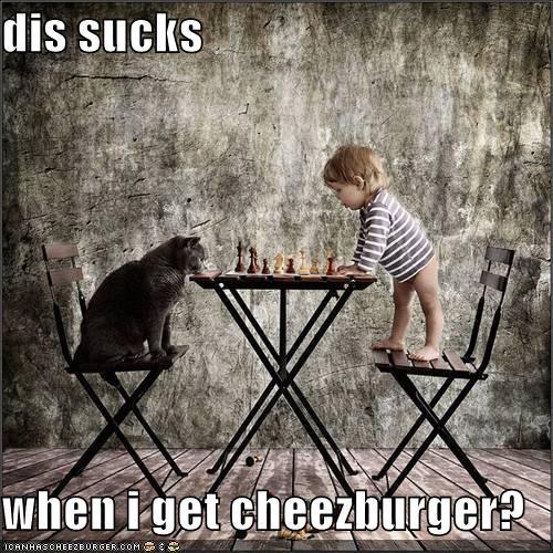Cheezburger Image 4066958592