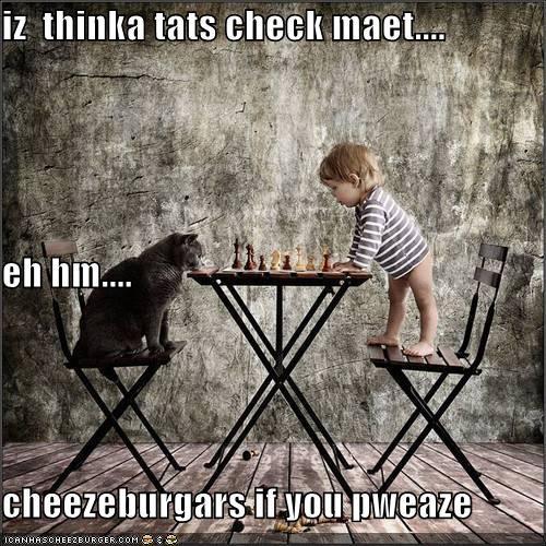 Cheezburger Image 4067024128