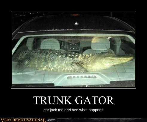 alligator,animal,anti-theft,awesome,cars,modern living,reptile,Terrifying