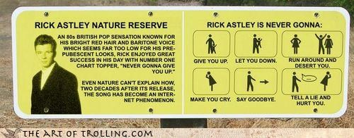 IRL never gonna give you up rick astley rick roll sign