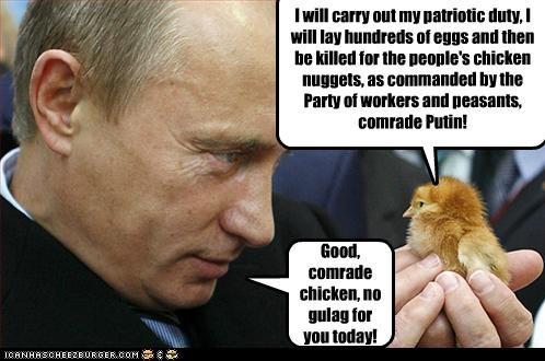 funny lolz Vladimir Putin vladurday - 4069685760