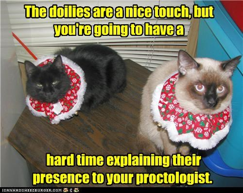 but caption captioned cat Cats caveat difficult do not want doilies explaining hard time nice nice touch revenge siamese threat touch upset