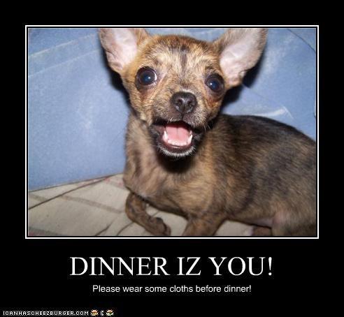 DINNER IZ YOU! Please wear some cloths before dinner!