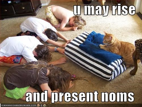 bowing,caption,captioned,cat,noms,permission,present,rise,sacrifice,throne,worship