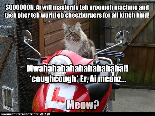Cheezburger Image 4075581952