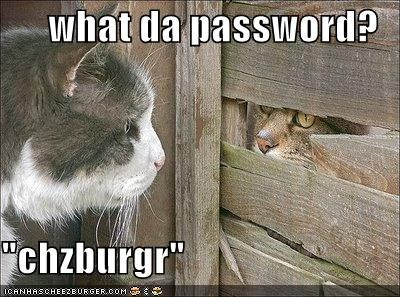 Cheezburger Image 4075635968