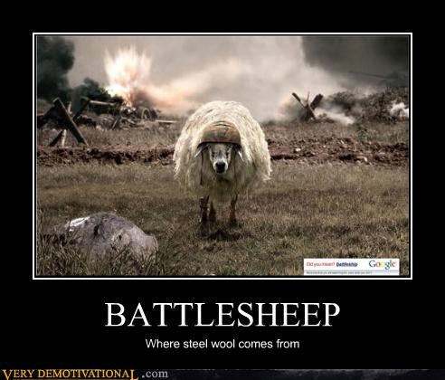 BATTLESHEEP Where steel wool comes from