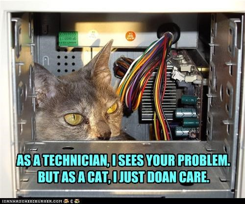 apathy,caption,captioned,cat,computer,dont-care,inspection,on the one hand,on the other,problem,technician