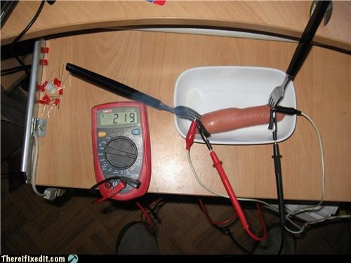 cooking electricity hot dog its alive - 4077644032