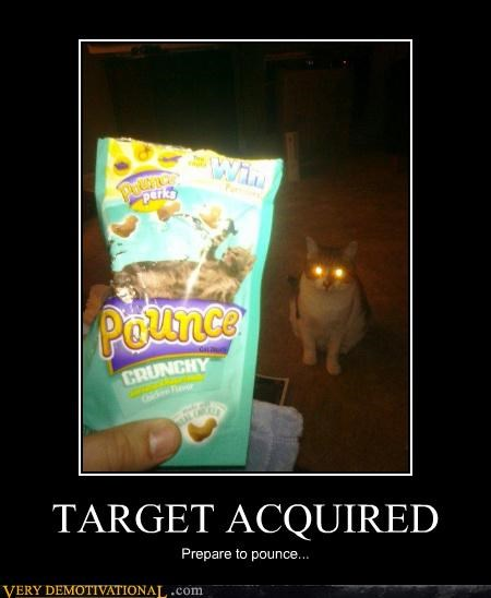 Cats food lazer eyes pounce skynet skypet terminator Terrifying - 4077670912