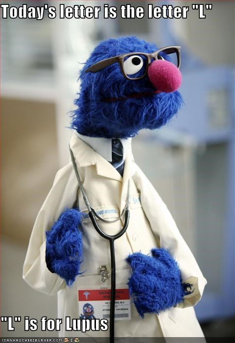 doctors,grover,House MD,its not lupus,lolz,puppets,Sesame Street