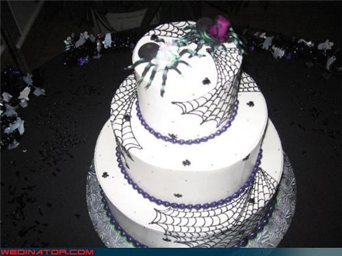 cobweb wedding cake Dreamcake eww funny wedding photos Halloween wedding cake spider wedding cake tarantula bride tarantula cake toppers tarantulas wearing hats themed wedding cake Wedding Themes - 4079613696
