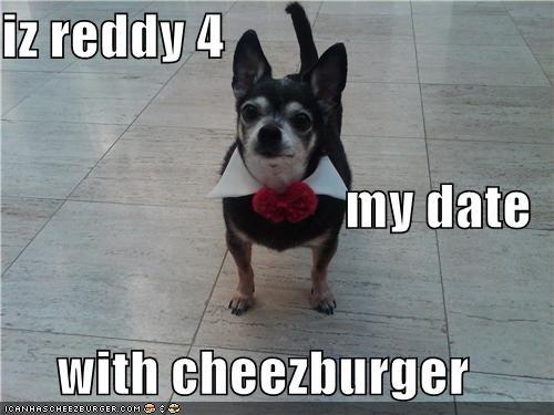 Cheezburger Image 4079951104
