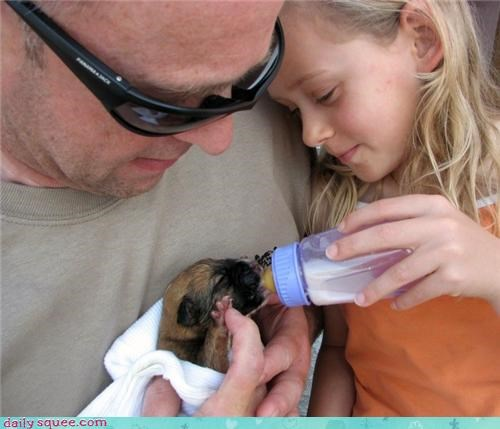 humans-on-my-daily-squee Om Nom Monday puppy
