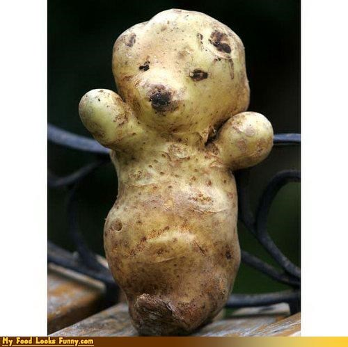 bear fruits-veggies illusion looks like potato