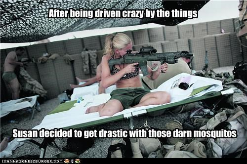 After being driven crazy by the things Susan decided to get drastic with those darn mosquitos