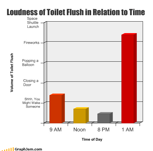 Loudness of Toilet Flush in Relation to Time