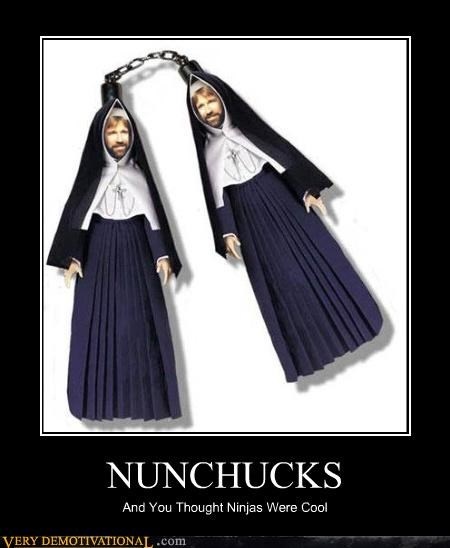 chuck norris Hall of Fame nun chucks nuns puns Pure Awesome weapons - 4084756736