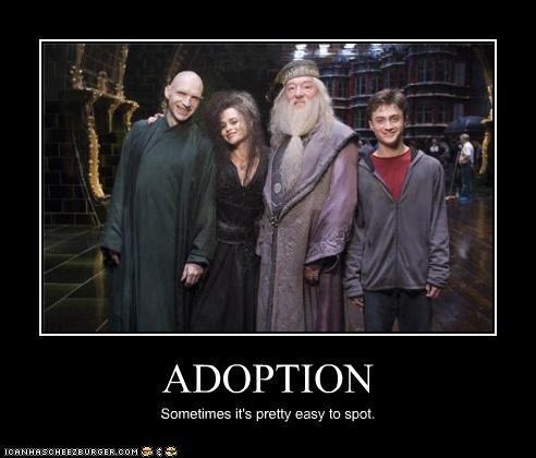 adoption,Daniel Radcliffe,family,Harry Potter,helena bonham-carter,lolz,Michael Gambon,ralph fiennes,sci fi