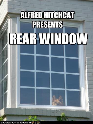 alfred hitchcock german shepherd Movie parody pun rear window Staring window