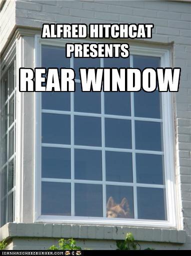 german shepherd Movie parody pun Staring window - 4089270272