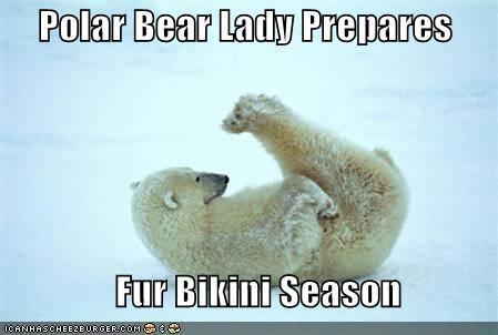 9b778b372ef09 Polar Bear Lady Prepares Fur Bikini Season - Cheezburger - Funny ...
