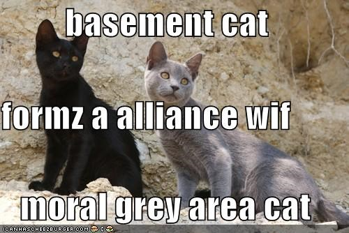 alliance,basement cat,caption,captioned,cat,forming,gray area,moral,morality