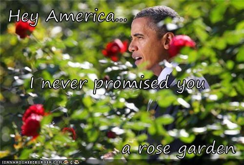 Hey America... I never promised you a rose garden - Politics ...