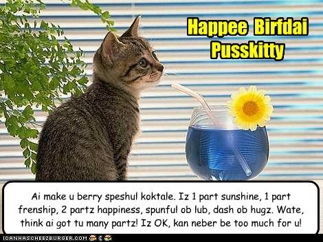 Ai make u berry speshul koktale. Iz 1 part sunshine, 1 part frenship, 2 partz happiness, spunful ob lub, dash ob hugz. Wate, think ai got tu many partz! Iz OK, kan neber be too much for u! Happee Birfdai Pusskitty