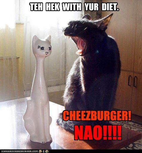 Cheezburger Image 4095270656