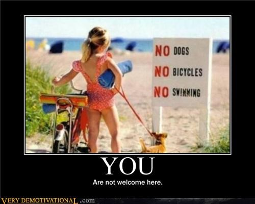 beach,bicycle,dogs,hilarious,little kids,rules,swimming