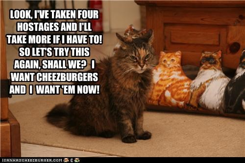 caption captioned cat cheezburgers demands hostage hostages negotiation now situation - 4097178112