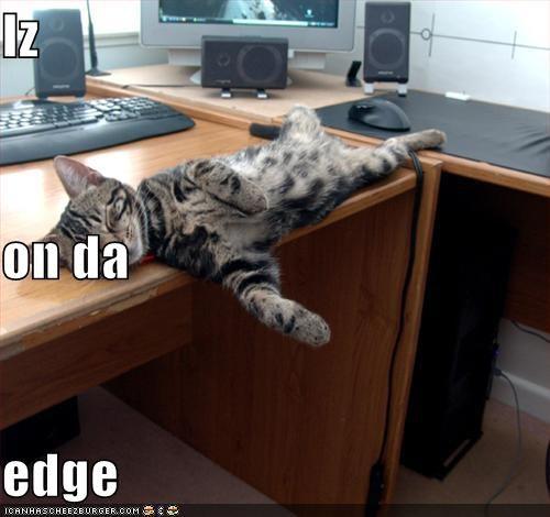 Cheezburger Image 4097493504