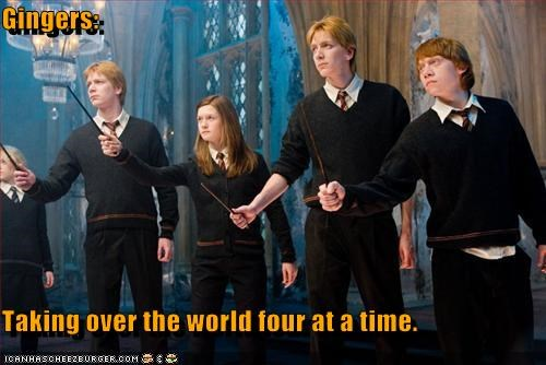 gingers Hall of Fame Harry Potter lolz movies Ron Weasley sci fi - 4099532800